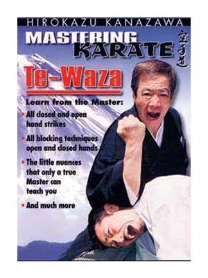 dvd kanazawa skif shotokan karate te-waza