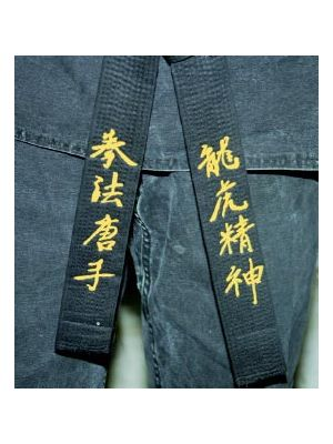 karate  pas vezenje, judo pas vezenje1